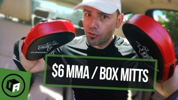 $6 MMA Boxing Focus Pads Mitts. Are Expensive PADS Better?  *** WAISHENGREN Pads Review.